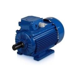 Электродвигатель АИР100L2-У3-400/690- 50IM2081-Р.К.В.К31Е для REMEZA 4043300507