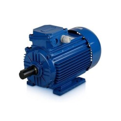 Электродвигатель АИС100L2У2-220/380-50IM2081 К31ААА IE1 Э-5 для REMEZA 4042300304
